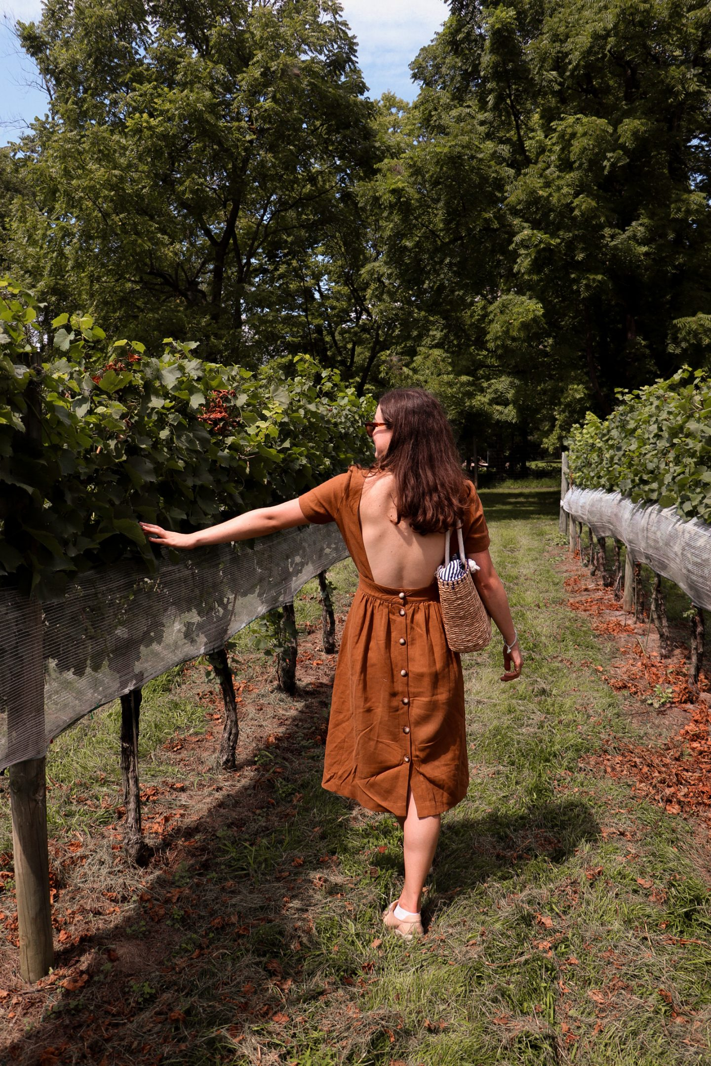 Virginia Is For Wine Lovers – A Day Trip to the Vineyards